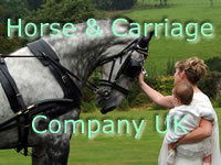 Horse and Carriage Co. UK banner